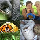 Bwindi Forest Farm & Campsite